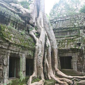 Cambodian cruises - Angkor Temples cruises